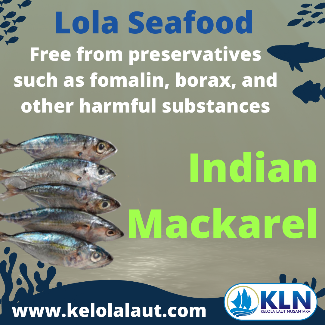 Indian Mackerel fillet free from preservatives such as formalin, borax and other harmful substances.