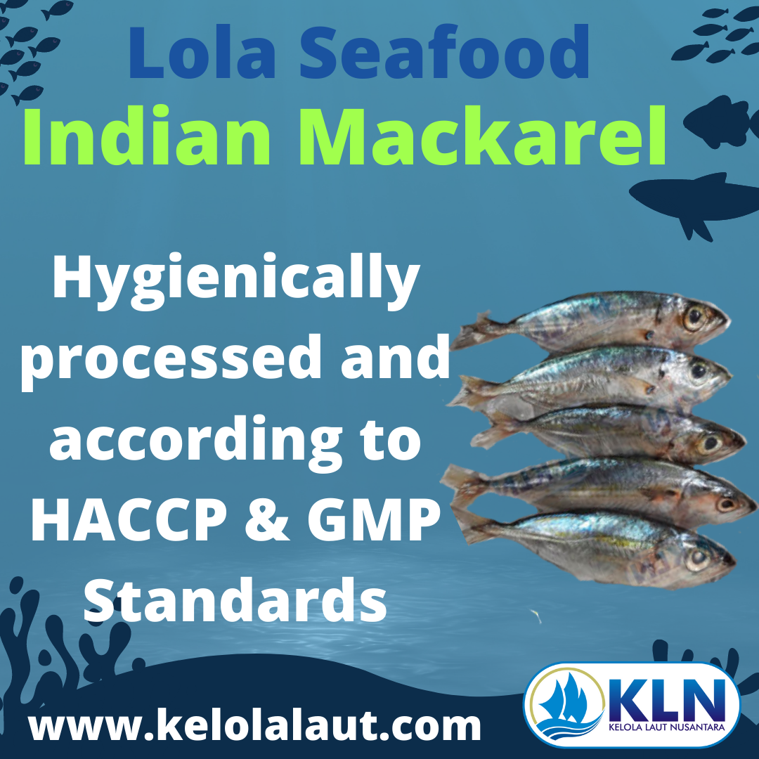 Indian Mackerel Hygienically processed and according to HACCP & GMP Standards.