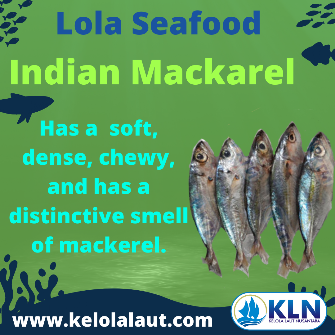 Indian Mackerel texture is  soft, densed, chewy, and has a distinctive smell of mackerel