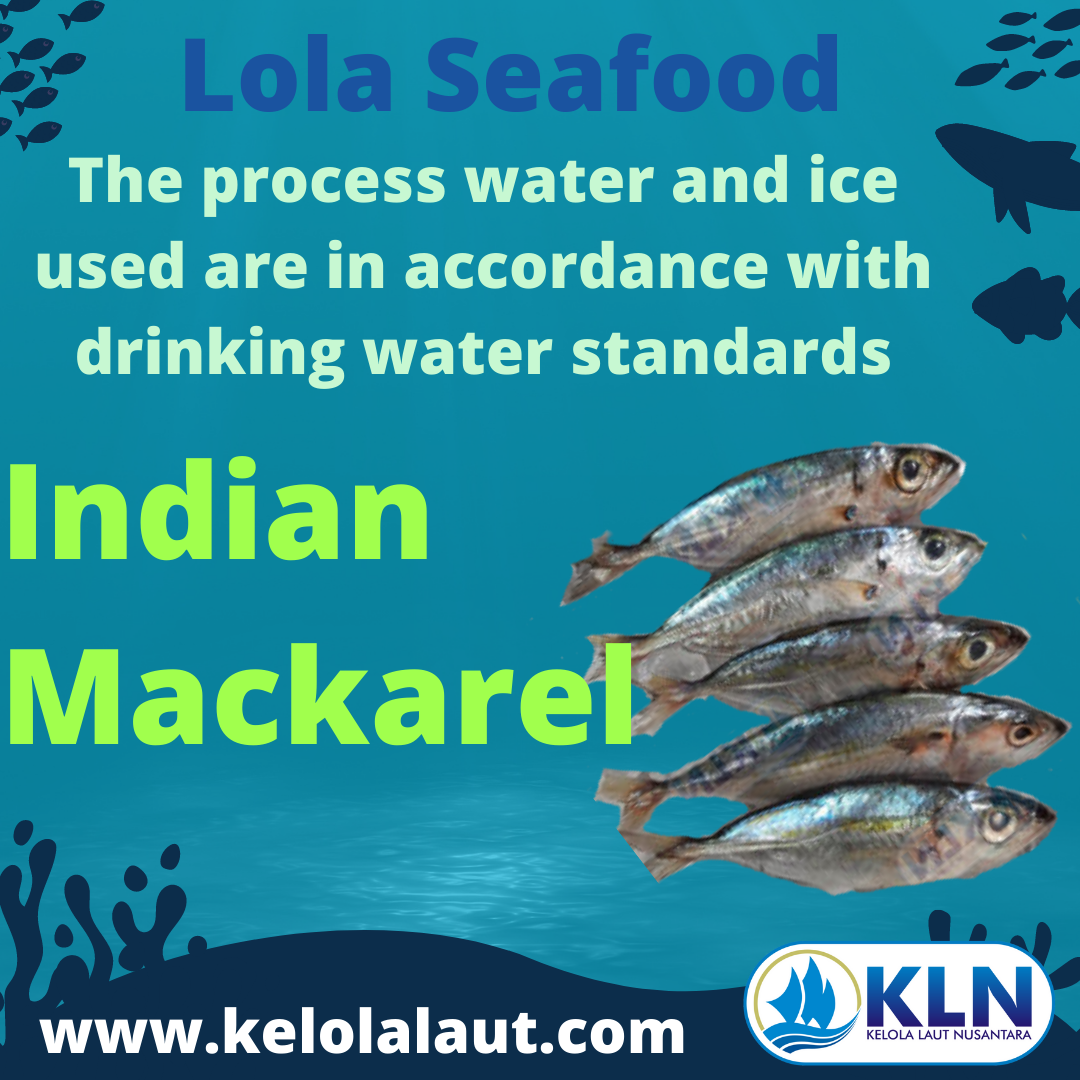 Indian Mackerel – water and ice used within the process are in accordance with drinking water standards